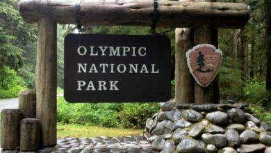 Olympic National Park dans l'état de Washington